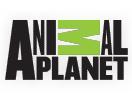 AnimPlan / Animal Planet NL