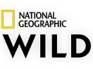 Nat.Geo.W NL / National Geographic Wild Nederland